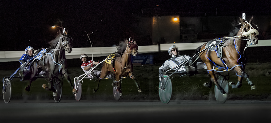 Harness racing at Fraser Downs